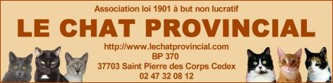 Association le chat provincial 37 St Pierre des corps